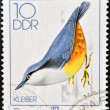 Stock Photo: GERMANY- CIRCA 1979: stamp printed in Germany, shows Song Birds, Nuthatch, circa 1979.