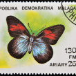 Stock Photo: MADAGASCAR - CIRC1992: stamp printed in Madagascas dedicated to butterfly shows pereute leucodrosime, circ1992