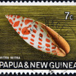 Stock Photo: PAPUNEW GUINE- CIRC1969: stamp printed in PapuNew Guineshows shell Mitrmitr(Episcopal miter), circ1969