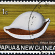 Stock Photo: PAPUNEW GUINE- CIRC1969: stamp printed in PapuNew Guineshows shell ovulovum, circ1969