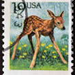 图库照片: UNITED STATES OF AMERIC- CIRC1991: stamp printed in USshows Roe Deer (Capreolus capreolus), circ1991