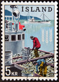 ICELAND - CIRCA 1963: A stamp printed in Iceland dedicated to global campaign against hunger shows fishermen, circa 1963 — Stock Photo