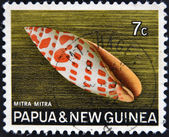 PAPUA NEW GUINEA - CIRCA 1969: A stamp printed in Papua New Guinea shows shell Mitra mitra (Episcopal miter), circa 1969 — Stok fotoğraf
