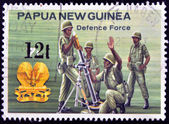 PAPUA NEW GUINEA - CIRCA 1981: A stamp printed in Papua New Guinea shows to Defense force, circa 1981 — Stock Photo