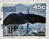 NEW ZEALAND - CIRCA 1988: A stamp printed in New Zealand shows The tail of a whale at Kaikoura, circa 1988 — Stock Photo