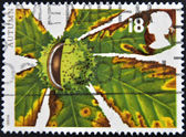 GREAT BRITAIN - CIRCA 1993: A stamp printed in United Kingdom shows the autumn whit a leaf and fruit of the chestnut, circa 1993 — Stock Photo