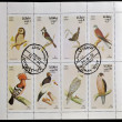 STATE OF OMAN - CIRCA 1972: Collection stamps printed in State of Oman shows series devoted to the birds, circa 1972 - Stock Photo