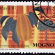 Stock Photo: BRAZIL - CIRC1997: stamp printed in Brazil shows Mahogany, Swietenimacrophyllking, circ1997