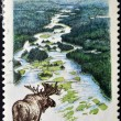 CANAD- CIRC1991: stamp printed in Canadshows Main river, circ1991 — Stock Photo #11844298