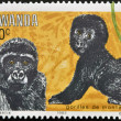 RWANDA - CIRCA 1983: A stamp printed in Rwanda showing Gorilla, circa 1983 — Stock Photo