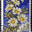 Stock Photo: SAN MARINO - CIRC1957: stamp printed in SMarino shows daisies, circ1957