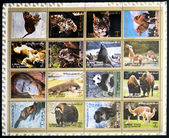 AJMAN- CIRCA 1972: A collection of sixteen stamps showing pictures of endangered animals, circa 1972 — Stock Photo