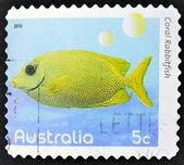 AUSTRALIA - CIRCA 2010: A stamp printed in Australia shows an image of Coral rabbitfish coral faith, inventive, circa 2010 — Stock Photo