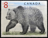 CANADA - CIRCA 1997: A stamp printed in Canada shows a Grizzly Bear, circa 1997 — Stock Photo