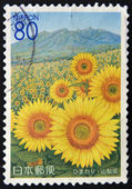 JAPAN - CIRCA 2005: A stamp printed in Japan shows the field of sunflower and mountain Yatsugatake, circa 2005 — 图库照片