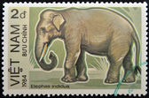 VIETNAM - 1984: A stamp printed in Vietnam displaying an elephant, Circa 1984 — ストック写真