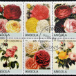 Stock Photo: ANGOL- CIRC2000: Collection stamps shows roses, circ2000