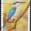 Stock Photo: AUSTRALIA - CIRCA 2010: A stamp printed in Australia shows a red backed kingfisher on a branch, circa 2010