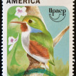 CUBA - CIRCA 1995: A stamp printed in Cuba shows a bird, todus multicolor, circa 1975 — Stock Photo