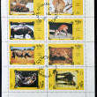 OMAN - CIRCA 1973: Collection stamps printed in State of Oman shows different animals, circa 1973 — Stock Photo