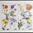 OMAN - CIRCA 1977: A collection stamps printed in Oman showing eight types of flowers, circa 1977 — Photo