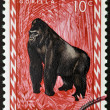 RWANDA - CIRCA 1985: A stamp printed in Rwanda showing gorilla, circa 1985 — Stock Photo