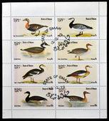 Omán - circa 1977: un sellos de colección impresión en omán mostrando ocho clases de oca, circa 1977 — Foto de Stock