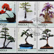 ANGOL- CIRC2000: Collection stamps shows different bonsai, circ2000 — Stock Photo #12129668