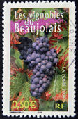 FRANCE - CIRCA 2004: A stamp printed in France shows the vineyards of Beaujolais, circa 2004 — Stock Photo
