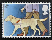 UNITED KINGDOM - CIRCA 1981: A stamp printed in Great Britain shows Guide Dog for the Blind, circa 1981 — Stock Photo