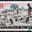 MALI - CIRCA 1961: A stamp printed in Mali shows Shepherd and Sheep, circa 1961 — Stock Photo