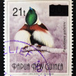 PAPUA NEW GUINEA - CIRCA 1993: A stamp printed in Papua shows bird of paradise, paradisaea guilielmi, circa 1993 — Stock Photo