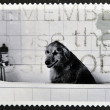 Stock Photo: UNITED KINGDOM - CIRCA 2001: A stamp printed in Great Britain shows Dog in Bath, circa 2001