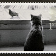 Stock Photo: UNITED KINGDOM - CIRC2001: stamp printed in Great Britain shows Cat watching Bird, circ2001