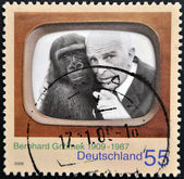GERMANY - CIRCA 2009: A stamp printed in Germany shows Bernhard Grzimek, circa 2009 — Stock Photo