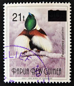 PAPUA NEW GUINEA - CIRCA 1993: A stamp printed in Papua shows bird of paradise, paradisaea guilielmi, circa 1993 — Photo