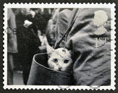 UNITED KINGDOM - CIRCA 2001: A stamp printed in Great Britain shows Cat in Handbag, circa 2001 — Foto Stock
