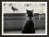 UNITED KINGDOM - CIRCA 2001: A stamp printed in Great Britain shows Cat watching Bird, circa 2001 — Stock Photo
