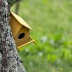 Colorful birdhouse — Stock Photo