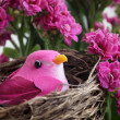 Stock Photo: Bird and Flowers