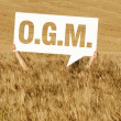 Cornfiled O.G.M. — Stock Photo #10993634