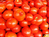 Background of red ripe tomatoes — Stock Photo