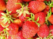 Uppsättning av en mogen jordgubbe — Stockfoto