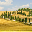 Old farm in Val d&amp;#039;Orcia (Tuscany) - Stock Photo