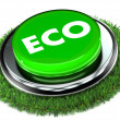 Eco Button - Stock Photo