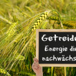 Stockfoto: Grain and sign