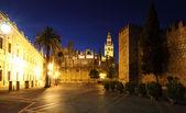 セビリアの大聖堂は夜に照らされます。スペイン アンダルシア — ストック写真