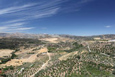 Landscape near Ronda, Andalusia Spain — Stock Photo