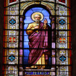 Window with St. Petrus in the Cathedral of San Salvador, Jerez de la Frontera, Spain — Stock Photo #12407437