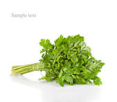 Bunch of fresh green parsley isolated on white background — Stock Photo